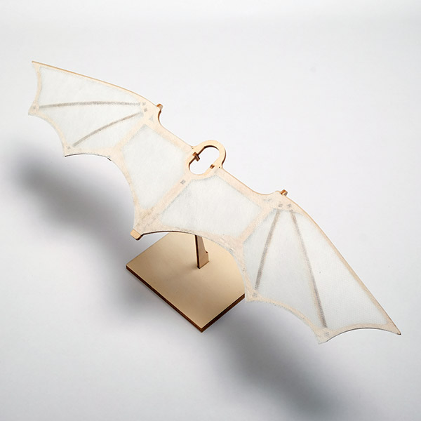 Leonardos-Glider